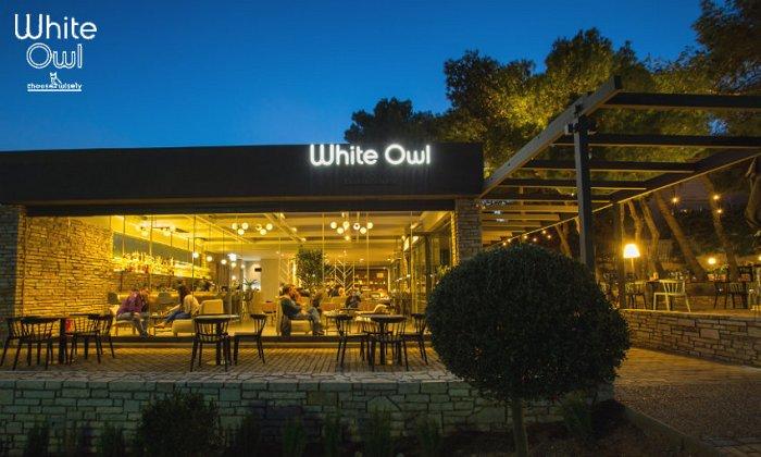 White Owl | Θρακομακεδόνες εικόνα